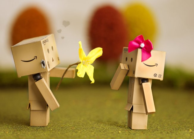 Danbo's First Love
